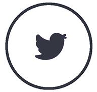 icono-twiter-gif